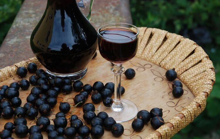 Рецепты черничных настоек на водке и на спирту
