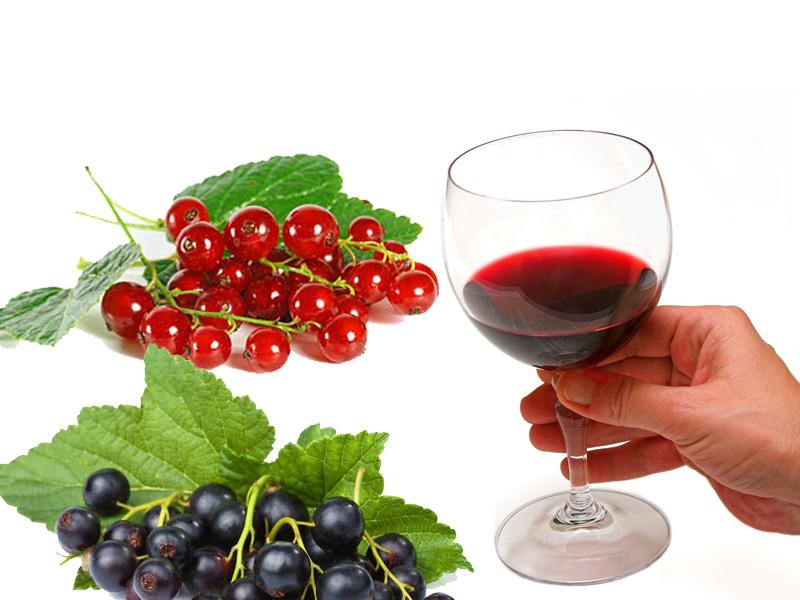 Как приготовить домашнее вино из красной и черной смородины