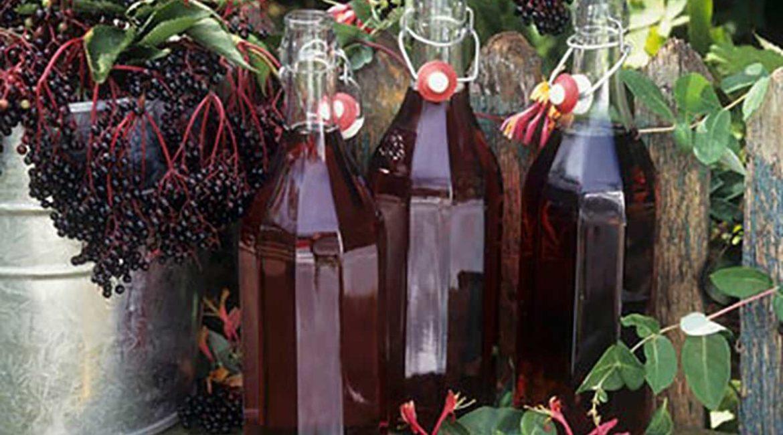 Как приготовить вино из черемухи. Домашний рецепт