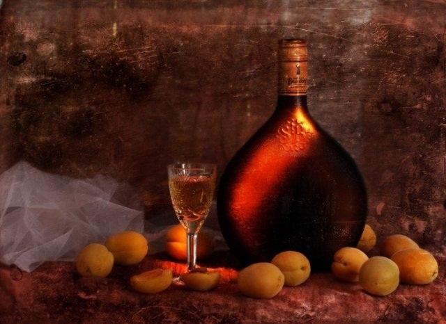 Как приготовить вино из абрикосов. Рецепт
