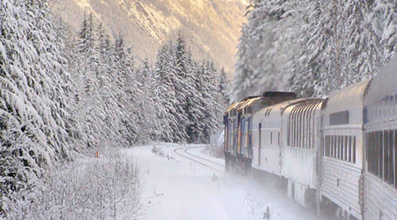 Поездка на поезде в хорошей компании